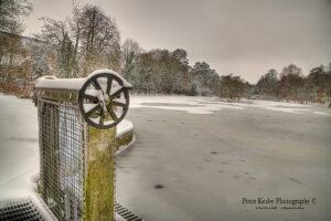 Bushy Ruff - Ice And Snow