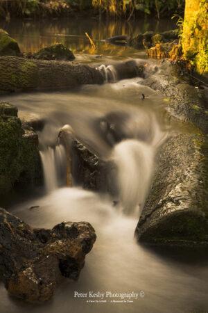Kearsney Abbey - Waterfall #1