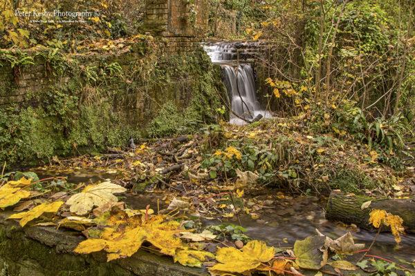 Kearsney Abbey - An Autumn Waterfall #2
