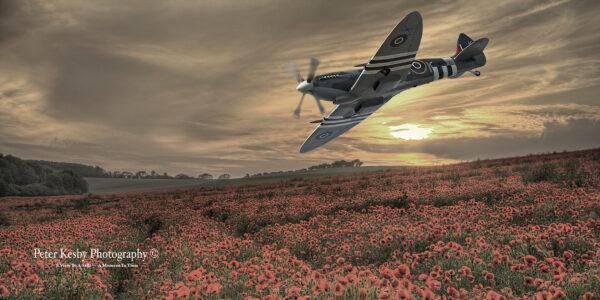 Composite - Spitfire Over Poppy Field