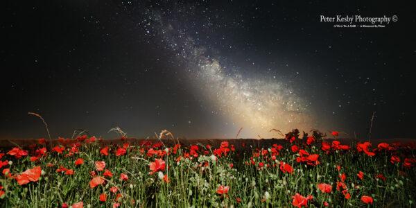 Poppies And Milky Way At Langdon Cliffs