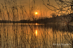 Westbere - Sunset