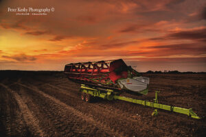Agriculture - Sunset
