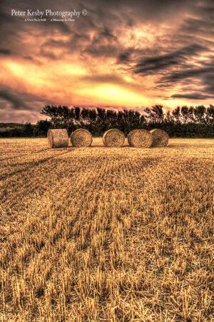 Hay Bales - Harvest - Sunset