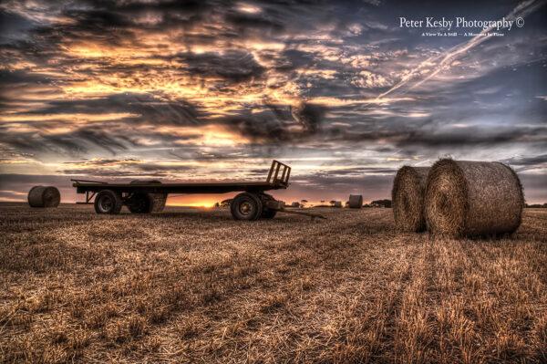 Trailer - Harvest - Sunset
